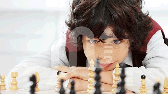 yetişkin zeka oyunları