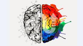 Sağ Beyin - Sol Beyin Testi  | MentalUP
