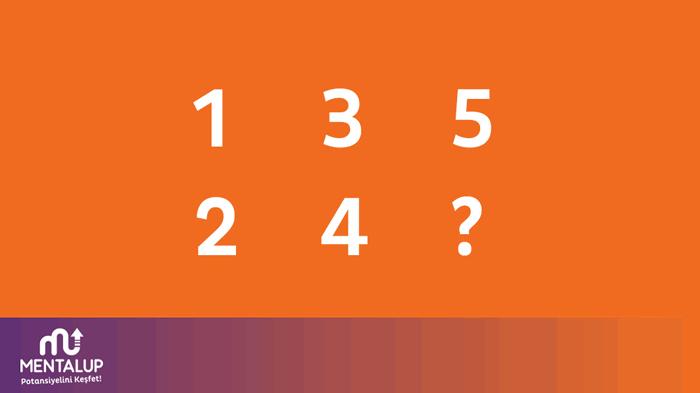 matematik zeka sorusu 8