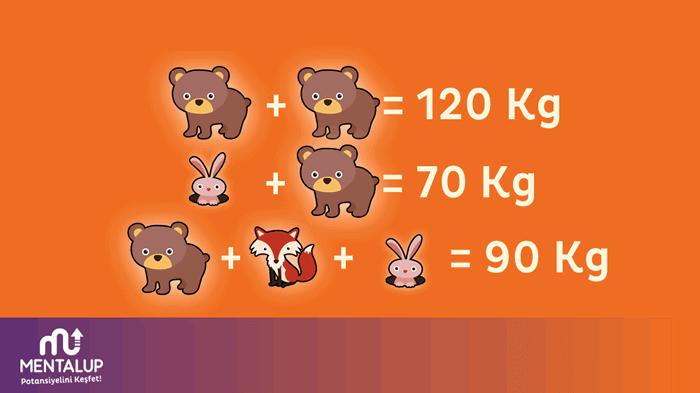 matematik zeka sorusu 9